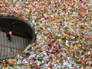 Martin Place Memorial | Daily Telegraph